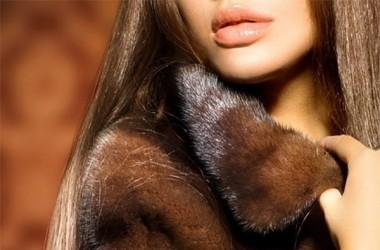 ELENA FURS, сеть меховых салонов